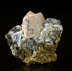 Orthoclase Carlsbad Twinning (Stan Celestian) Tags: orthoclase granite porphyriticgranite porphyry phenocryst carlsbadtwin feldspar