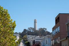 Up the hill (Dominic Sagar) Tags: amy arlen felsen friends sanfrancisco hill tower trees california unitedstates us