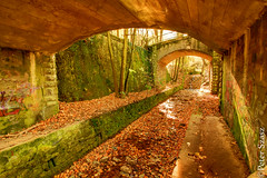 Fall's tunnel (Peter Szasz) Tags: hungary magyarország lillafüred hdr outside outdoors leaves autumn fall trees tunnel water stream walk wide wideangle stones graffiti rocks out colourful calm canon clear tranquil peaceful brown bright yellow orange green path light life nature landscape wood