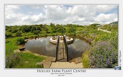 Hollies Farm Plant Centre (setsuyostar) Tags: holliesfarm bonsall matlock derbyshire countryside june2017 summer2017 kenhawley samsunggalaxys7 phonepics