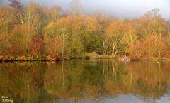 Herbst am Main (2) (diwe39) Tags: main karlstadt winter201819
