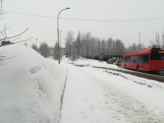 Oslo 18 febbraio 2018 (16)