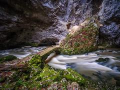 P1107748-LR (carlo) Tags: panasonic g9 dmcg9 slovenija slovenia rakovškocjan rak riodeigamberi notranjska caves river
