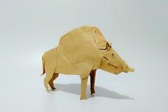 猪神 (guangxu233) Tags: origami origamiart paper art paperart paperfolding handmade kamiyasatoshi 折纸 折り紙 折り紙作品