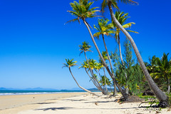 Mission Beach (Theo Crazzolara) Tags: beach missionbeach australia queensland palm tree palmtree natural nature landscape scenic scenery beautiful paradise holiday vacation tropic tropical sand lonely perfect spot highlight secret