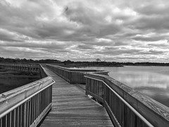 The Journey (jade2k) Tags: md assateague walkway water statepark bw