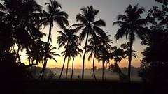 Good morning (Abraham Jacob N) Tags: morning kottayam kerala india nature sunrise