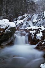 Uogaeri no Taki Falls IMG_7465 (armada_rider_jp) Tags: waterfall waterfalls winter snow waterscape forest woods stream snowscape winterscaper 滝 渓流 岐阜 日本 冬 雪 gifu japan takayama