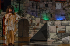 _DSC0408 (Carlo Granisso) Tags: musical church chiesa teatro theatre actor actress jesus sanfrancesco piece mask forzavenitegente maddalena altare animals animali ballo dancing bw blackandwhite torino turin nikon d7500 nikond7500