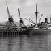 Inter-Island steamer at Lytellton, 1950