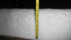 "A Hair over 6"" (blazer8696) Tags: 2018 avery brookfield ct connecticut dscn4112 ecw obtusehill t2018 tabledeck usa unitedstates zoe snow storm winter"