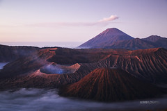 INDONESIA_1909_0818@ANDREAFEDERICIPHOTO (Andrea Federici) Tags: indonesia andreafedericiphoto travel travelling java bali flores nature people traveller holiday