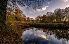 The bridge in the park (andreasmally) Tags: bridge brücke fürstenau schlossteich schlosspark wasser water herbst autumn germany deutschland landschaft landscabe himmel sky pond