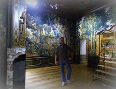 The Hague '19 (faun070) Tags: gemeentemuseum thehague denhaag faun070 dutchguy