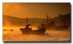 Morning Mist (jeremy willcocks) Tags: morning mist colour landscape boats trawlers sun coast water salcombe wwwsouthwestscenesmeuk jeremywillcocks nikond300 sigma18200mm