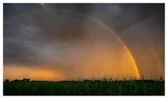Double whammy (leo.roos) Tags: regenboog rainbow rain regen minicampingtoventje a7 zeiss carlzeissjena czj flektogon m42 carlzeissjenaflektogon2028 darosa leoroos