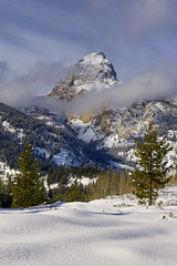 The Grand Teton (Tony Hochstetler) Tags: nikon d850 nikonafsnikkor24–70mmf28eedvr tetons grandtetonnationalpark wyoming grandteton mountain vertical landscape snow winter trees clouds