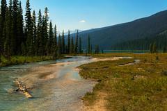 Summer day (irmur) Tags: lake emerald yoho np canada
