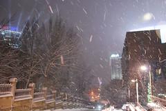 Засніжений зимовий Київ 389 InterNetri.Net Ukraine