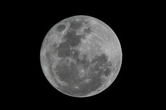 IMG_3852 (Tech Hack) Tags: moon sky long range photography canon eos 1200d 250mm beautiful fullmoon