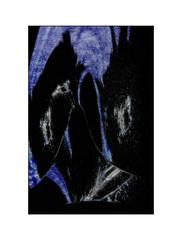 THE BLUE WOLF (wolfiwolf) Tags: wolfiwolf wolfi wolf wolfiart wolfskunst eneamaemü blue blau bleu bluenote bildlen butler blu bedeutung butlers beben meinneuesbildlen multiversum marieschen art creation leloupbleu derexplorierendste existenz farkas fuddler genial huldigung ich ichhabezweibutler ihaanblue jazzinbaggies jazz kleinewolfis kunst lichtkomposition licht miuniversummultiversender nachdemvollmond offenbaren prall quantensuppe quantensymphonie quantentheorie resonanz rot stube stüben schöpfung schön tanzendesresonanzuniversum universe universum unendlichkeit ursprung überirdisch uber vollmond vision wolfiwolfy expressionismus elysium zen zensibel lupissimus lupuslupuslupus lupuslupissimus