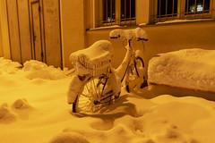 Schnee(p)flug (wolf238) Tags: fröstig schnee winter bicycle fahrrad snow neige