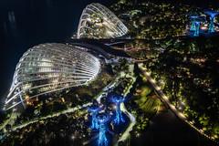 Singapore - Gardens by the Bay (Rafael Zenon Wagner) Tags: night nacht light licht 50mm