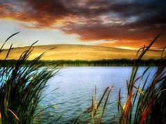 Prairie pond 31 (mrbillt6) Tags: landscape rural prairie pond waters shore grass sky photoart fall outdoors country countryside northdakota scenic
