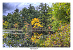 Holt Autumn Series : Aspen Reflection (Pearce Levrais Photography) Tags: water pond lake reflection cloud canon hdr picoftheday photooftheday explore nh newhampshire autumn autumnal autumnleaves foilage fall