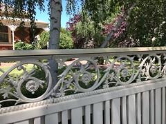 Cast iron fence pattern (birdsey7) Tags: patterns cf18 fences pattern