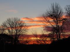 Sunrise_9510 (smack53) Tags: smack53 sunrise earlymorning morning morningsky clouds cloudy cloudysky trees silhouettes paintedsky autumn autumnseason fall fallseason canon powershot sx530hs canonpowershotsx530hs westmilford newjersey