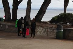 IMG_10920 (mudsharkalex) Tags: california pacificgrove pacificgroveca loverspointpark