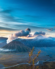 Welcoming the morning (Linardy Lie) Tags: mountain landscape nature indonesia bromo beautifull volcano stratovolcano travel travelling sky morning