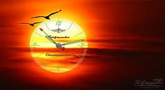 Vivid imagination ... (Klaus • infrequently online •) Tags: watch clockwork movement time uhr uhrwerk ure reloj horloge orologio klok uurwerk часы sonne sun sole sol soleil zon солнце ghrian aurinko güneş ήλιοσ сунце słońce sól ne matahari sunce слънце stork ciconiaciconia storch klapperstorch almindeligstork cigüeña cigogne cicogna ooievaar cegonha kattohaikara vögel birds uccelli aves oiseaux gevogelte pássaros птицы éin fåglar linnut kuşlar ταπουλιά fugler fugle burung птица ptaków chim fuglar ptice птици