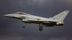 ZK342/342 TYPHOON  RAF (MANX NORTON) Tags: raf coningsby egxc tornado hawk tucano qra typhoon eurofighter a400 atlas f35 lightning