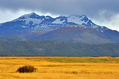 Chile, changing seasons (Vittorio Ricci (thanks for 4.1 millions views)) Tags: chile torresdelpainenp patagonia