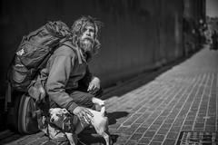 B1005110 (sswee38823) Tags: noctiluxm50mmf095asph noctiluxm109550mmasph noctilux095 noctilux noc noctiluxm109550asph leicanoctiluxm50mmf095asph 095 f95 leica50mmf95 50mm 50 man youngman beard homeless dog pet littledog portrait portraits streetportrait street face person people boston bostonma ma massachusetts city winter newengland leica leicam leicacamera m10 m10leica leicam10 leicacameraagleicam10 rangefinder photography photograph photo nofilter seansweeney seansweeneyphotographer