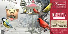 │T│L│C│ @Tannenbaum until December 22 (- TRUE & LAUTLOS CREATIONS -) Tags: tlc home collection tlchomecollection mesh animal animated store sl second life secondlife bird tannenbaum event prism feeder
