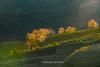 _Y2U3563.1218.Ô Qúy Hồ.Bản Khoang.Sapa.Lào Cai (hoanglongphoto) Tags: asia asian vietnam northvietnam northwestvietnam landscape scenery vietnamlandscape vietnamscenery vietnamscene sapalandscape nature afternoon sunny sunlight hillside flanksmountain trees teahill canon canoneos1dx canonef70200mmf28lisiiusm tâybắc làocai sapa bảnkhoang ôquýhồ phongcảnh phongcảnhsapa buổichiều nắng nắngchiều nắngsiên đồichè sườnđồi sườnnúi cây maianhđào sunnyafternoon