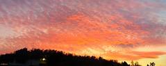 tramontoa (archgionni) Tags: cielo sky nuvole clouds autunno autumn colori colours sera evening colline hills alberi trees bosco wood luce light sole sun tramonto sunset