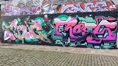 Sbug & Roes / Bruxelles - 22 dec 2018 (Ferdinand 'Ferre' Feys) Tags: bxl brussels bruxelles brussel belgium belgique belgië streetart artdelarue graffitiart graffiti graff urbanart urbanarte arteurbano ferdinandfeys