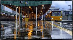 Reflecting Yellow (Welsh Gold) Tags: class 143 dmu terherbert service platform seven wet conditions cardiff southwales