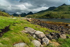 Grass and stones at Olderfjorden (Norway) (christian.rey) Tags: nordland norvège no austvägoya olderfjorden lofoten islands stones grass paysage landscape seascape sony alpha a7r2 a7rii 24105 mountains