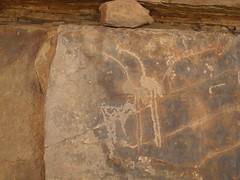 Chad Borkou (ursulazrich) Tags: tschad tchad chad ciad sahara sahel afrika afrique africa borkou ennedi tibesti rockart strauss ostrich autruche struzzi engravings gravuren gravures petroglyphs fauna