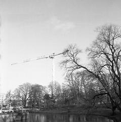 Kungsparken (rotabaga) Tags: sverige sweden svartvitt göteborg gothenburg lomo lomography lubitel166 tmax400 twinlens mediumformat mellanformat 120 6x6 diy