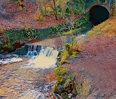 Overtoun Burn (Rollingstone1) Tags: overtoun dumbarton scotland burn stream water life waterfall pool tunnel bridge nature outdoors landscape scenery wild colour vivid art artwork soil earth tree