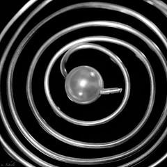 Pearl in the middle (u. Scheele) Tags: macro makro macromondays mm hmm canon canoneos80d closeshot closeup eos80d eos blackbackground black bw sw schwarz weis schwarzerhintergrund schwarzweis einfarbig indoor pearl perle monochrome allonecolor