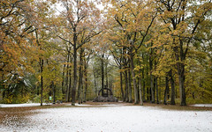 First Snow (judithrouge) Tags: snow autumn fall color cold augsburg germany schaetzlerbrunnen schätzlerbrunnen bavaria winter herbst herbstfarben bayern deutschland brunnen well fountain trees bäume landscape landschaft
