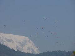 Pokhara, paragliding (TerezaŠestáková) Tags: nepal pokhara paragliding