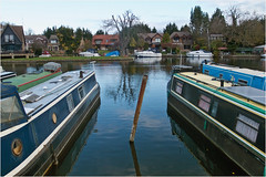 Day 323 Moored (Dominic@Caterham) Tags: moored boats thames water river houses trees sky reflections